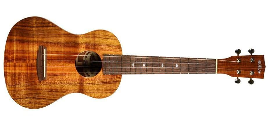 Best ukulele for under 1000 dollars
