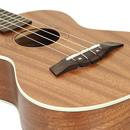 Best uke for beginners