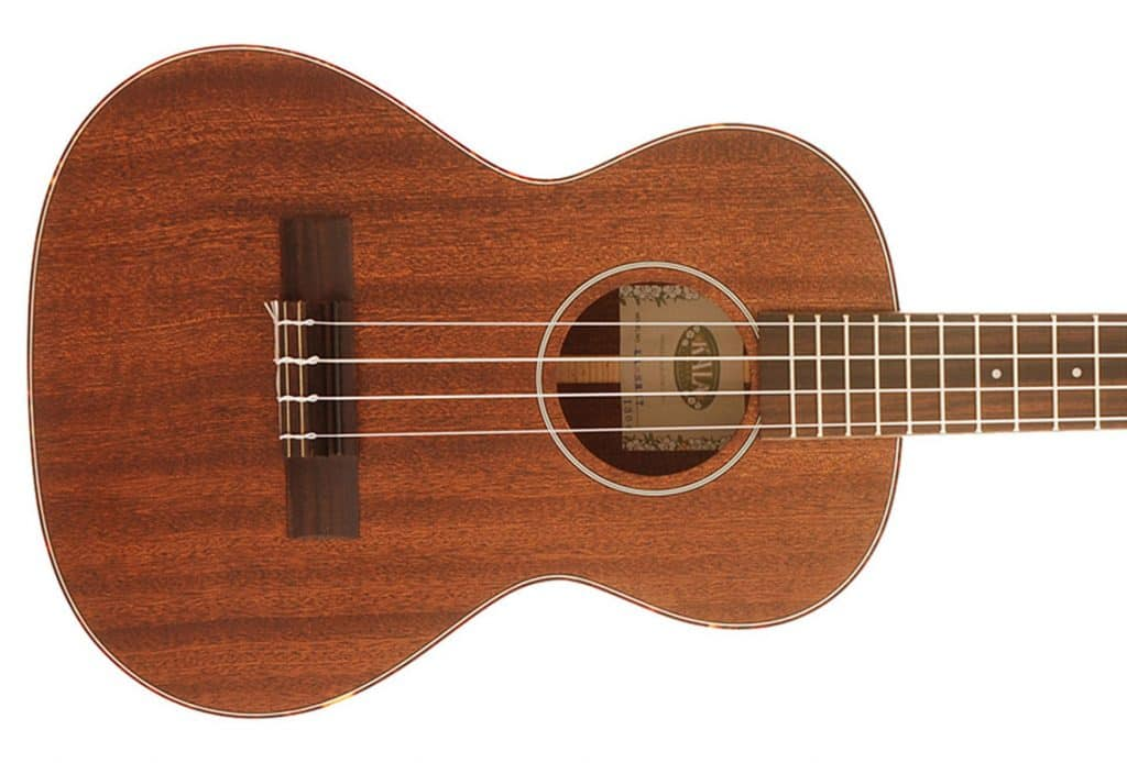 Best ukulele under 300 dollars