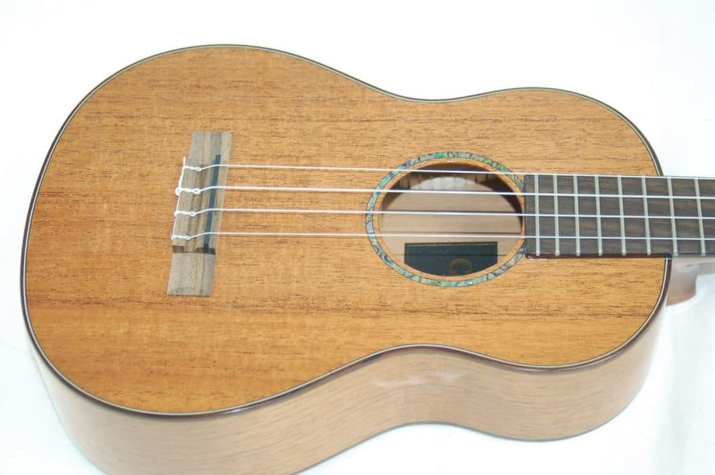 Best ukulele under 500 dollars