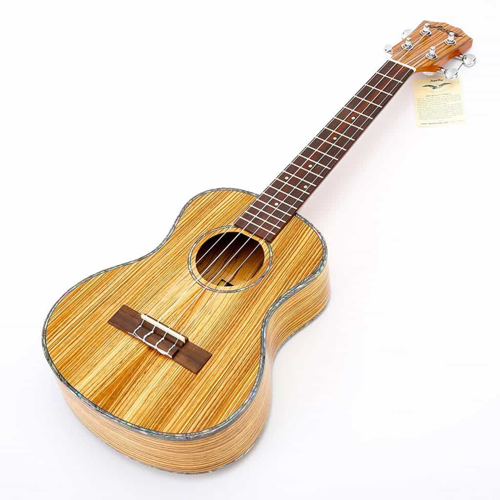 Best ukulele for under $300