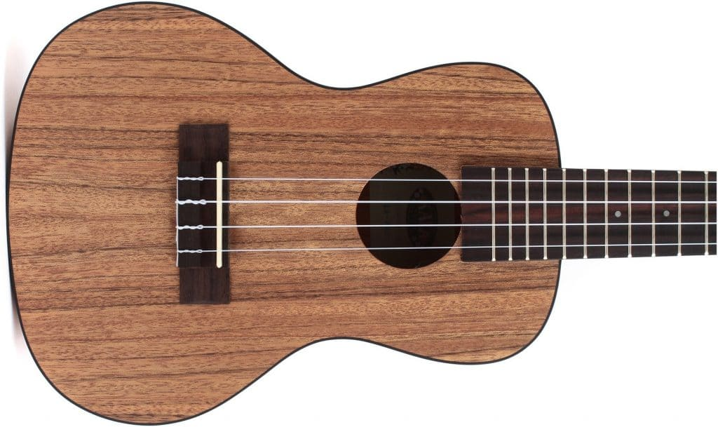 Best ukulele for under 200 dollars