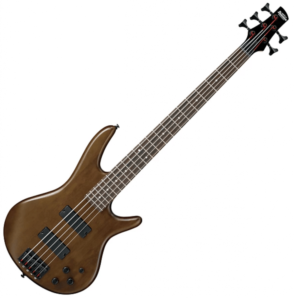 Best bass guitar under 300 dollars