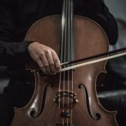 Best Brands to Consider When Purchasing a Cello